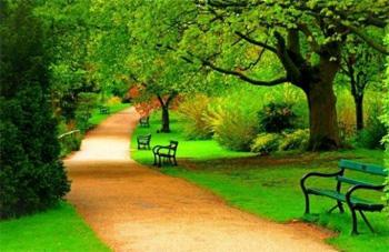 大自然美丽的景色