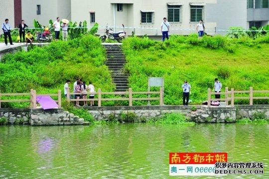 昨日中午,花都区天马河边,两人的尸体被分别打捞上岸,停放在岸边。 南都记者 梁炜培 摄