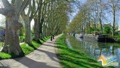 骑上自行车游法国 最美路线感受风景与人文