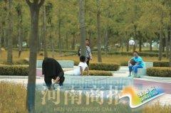 郑州生态廊道一片葱茏 负氧离子浓了 鸟儿多了