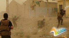 IS占领伊拉克拉马迪市政府 数十名警察被俘(图)
