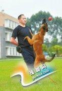 民警抽自己血训练警犬 晚上还要陪逛街