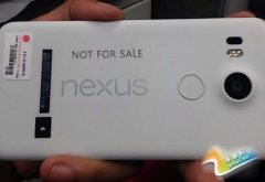 背部指纹识别确定 LG代工Nexus真机曝光