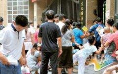 郑州小学报名首日 看看他们为啥没报上?
