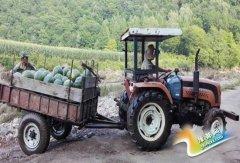 吉林兴旺村创新创业成为农民致富新引擎