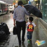 新版背影 一张感动250万网友的父亲撑伞图