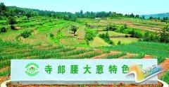 """大峪镇寺郎腰村入选农业部认定的""""全国一村一品示范村镇""""名单"""