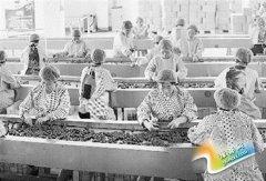 农民创业园:搭建农民创业新平台(图)