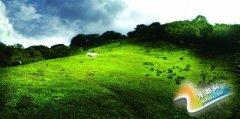 卢氏县潘河乡冠云山草甸引来无数摄影人到此采风