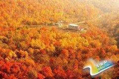 趁秋天还在 发现国内各省赏秋景最佳去处