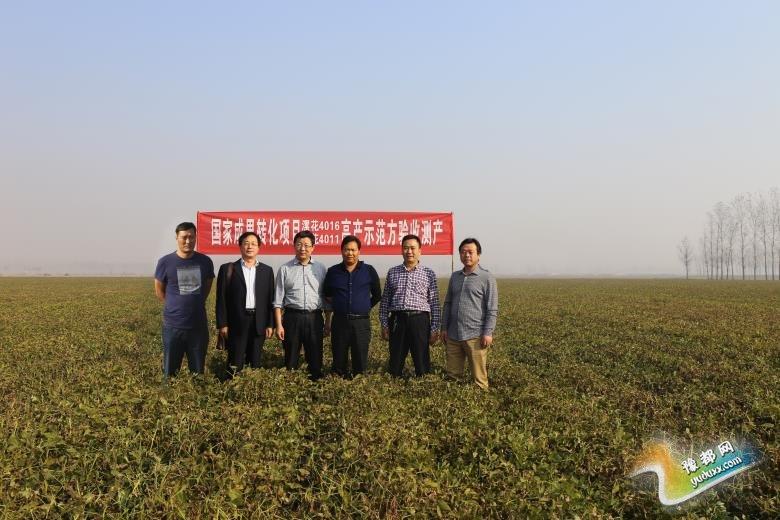 县孟寨镇吴庄村124户贫困户种植的700亩花生喜获丰收
