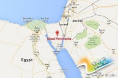 外媒:一架从埃及飞往俄罗斯圣彼得堡客机失联