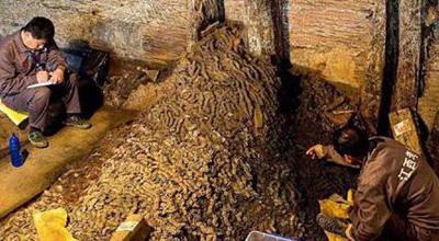 西汉古墓出土15吨五铢钱 相当于百万人民币