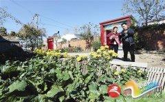 胡庙乡龙泉村:一个桃花盛开的地方