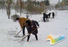 园林中心积极开展清理积雪工作
