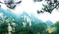 西峡银树沟()