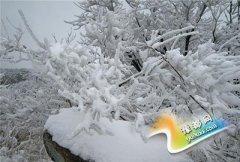 登封迎5年来11月最大雪 今起全省气温明显下降