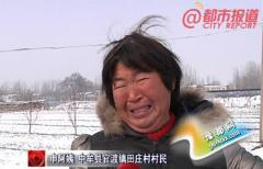 大雪压垮大棚,中牟官渡农户损失百万