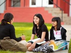 如何更好地与教授进行沟通?