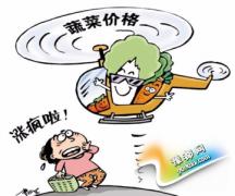 """韩国白菜卖出天价19元一棵 网友:""""走!韩国卖白菜去!"""""""