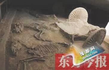 禹州发现战国大型殉马坑 疑与吕不韦墓有关(图)