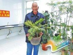 郑州65岁保洁大爷酷爱养花 将公厕变成花房(图)