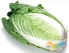 营养师:白菜有很好的食疗功效