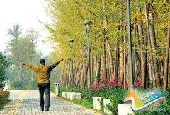 郑州10个新建公园年底开放 3年建生态廊道280公里