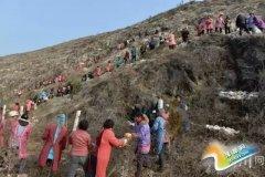 大石桥乡高标准打造石漠化综合治理示范区