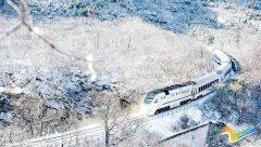"""""""雪国列车""""在这个冬天上演了,美绝"""