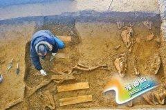 洛阳村庄挖出200余座古墓 出土车辆朱砂鲜艳
