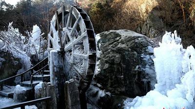 河南洛阳追梦谷小河出现冰挂景象