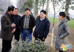 申保卫深入部分乡镇指导调研改善农村人居环境工作