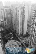 郑州燕庄安置小区8成住户为租客 从脏乱差逆袭