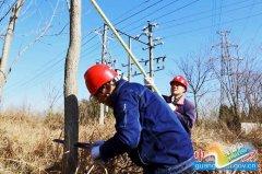 县供电公司:清树障保电网安全运行