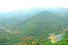 浮戏山杨树沟景区