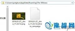 见证者The Witness存档位置 破解版保存进度方法
