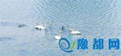 郑州10个新建区级综合公园开放 多位于三环以外