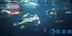 水下婚纱照怎么拍 注意水中摄影的相关事宜