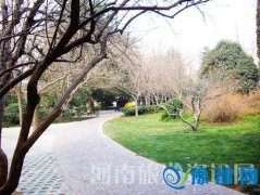 郑州绿荫公园