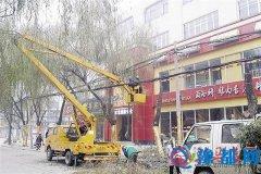 市园林部门开展冬季城区园林树木修剪工作