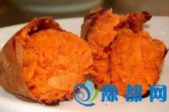 红薯有哪些药效作用