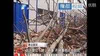漯河200棵绿化树一夜之间被腰斩 种树大爷:心里很难受