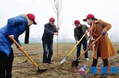 汝南县青年志愿者在老君庙镇植树点义务植树