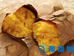 红薯的营养价值颇高 还能防癌抗癌