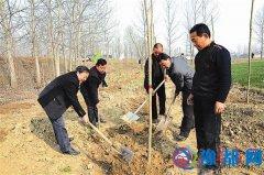 驿城区诸市镇组织干群开展义务植树活动