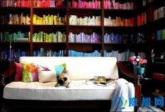 书虫特辑|书架容易积尘 懒惰的我该怎么办?