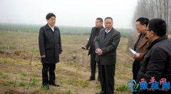 县领导深入各乡镇就农田林网、廊道建设工作推进情况进行集中观摩