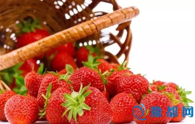 郑州市周边摘草莓地点全攻略 周末踏青好去处