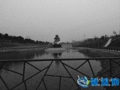 陕州:甘棠公园冬景别致
